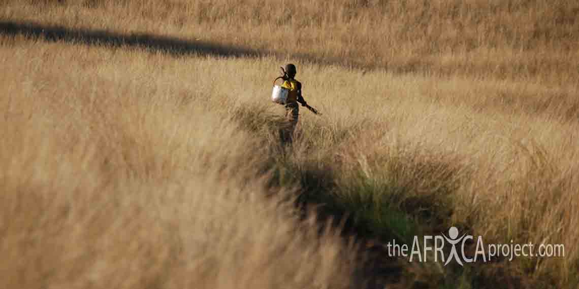 Child walking in a field in Nkandla 2007